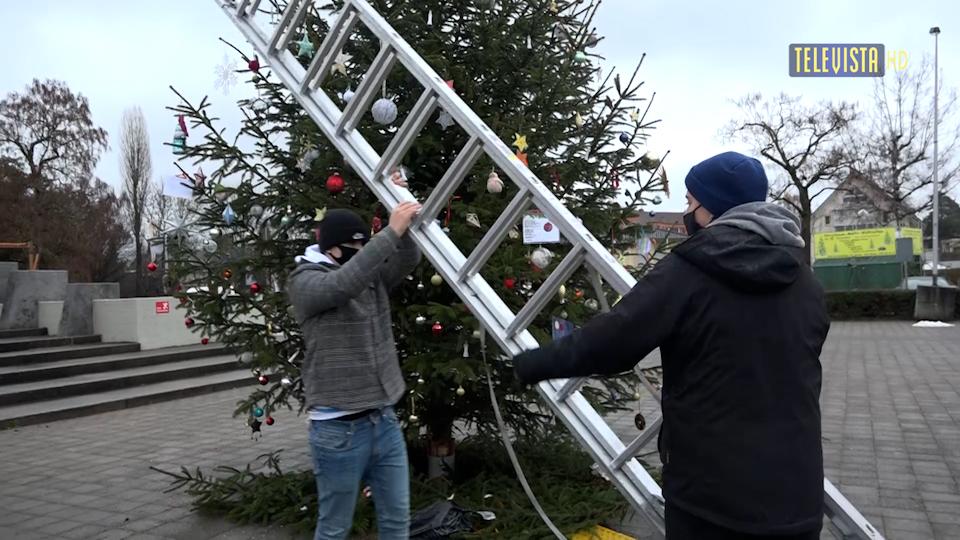 Vorschaubild für Weihnachtsbaum der Hoffnung