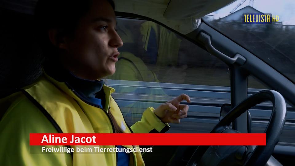 Vorschaubild für Tierrettungsdienst – Pickett mit Aline Jacot