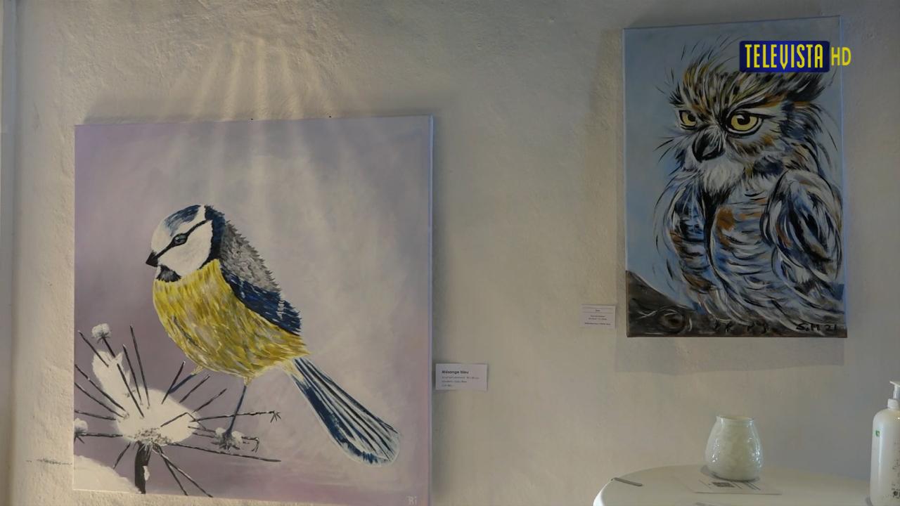 Vorschaubild für Créa Malclub – Neue Ausstellung im Doktorhaus