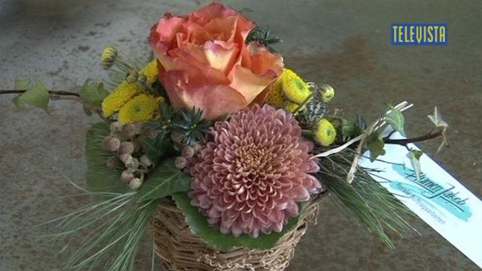Vorschaubild für Florale Impressionen