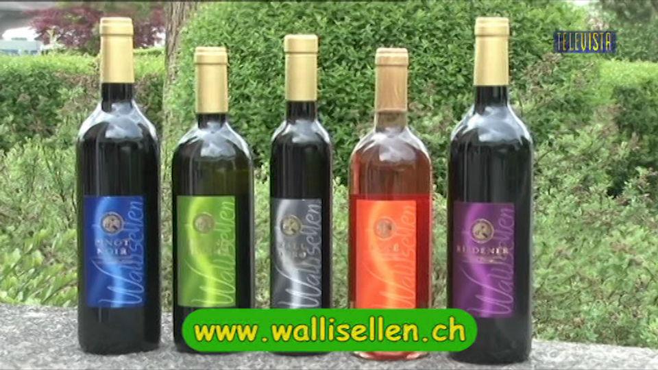 Vorschaubild für Walliseller Wein wird immer beliebter