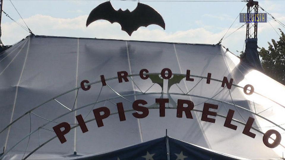 Vorschaubild für Circolino Pipistello in Wallisellen
