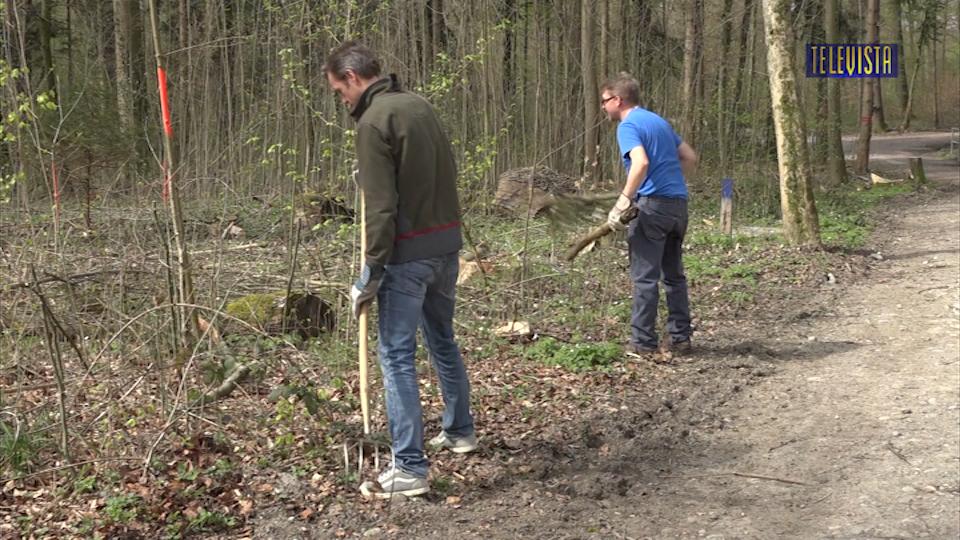 Vorschaubild für Waldputzete durch Freiwillige