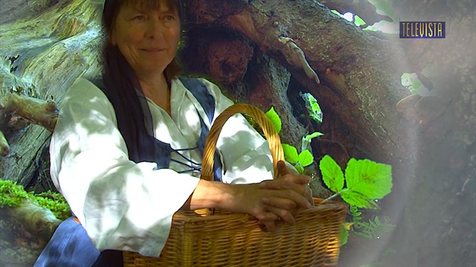 Vorschaubild für Wildes Wallisellen – Kräuter und Heilpflanzen